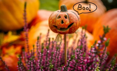 pumpkin_boo